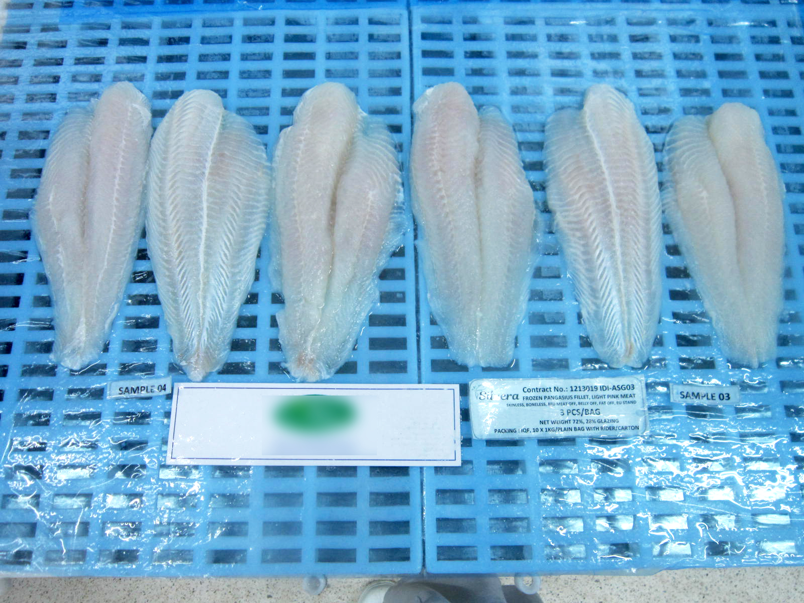 Checking Texture Of Defrosted Pangasius Fillets