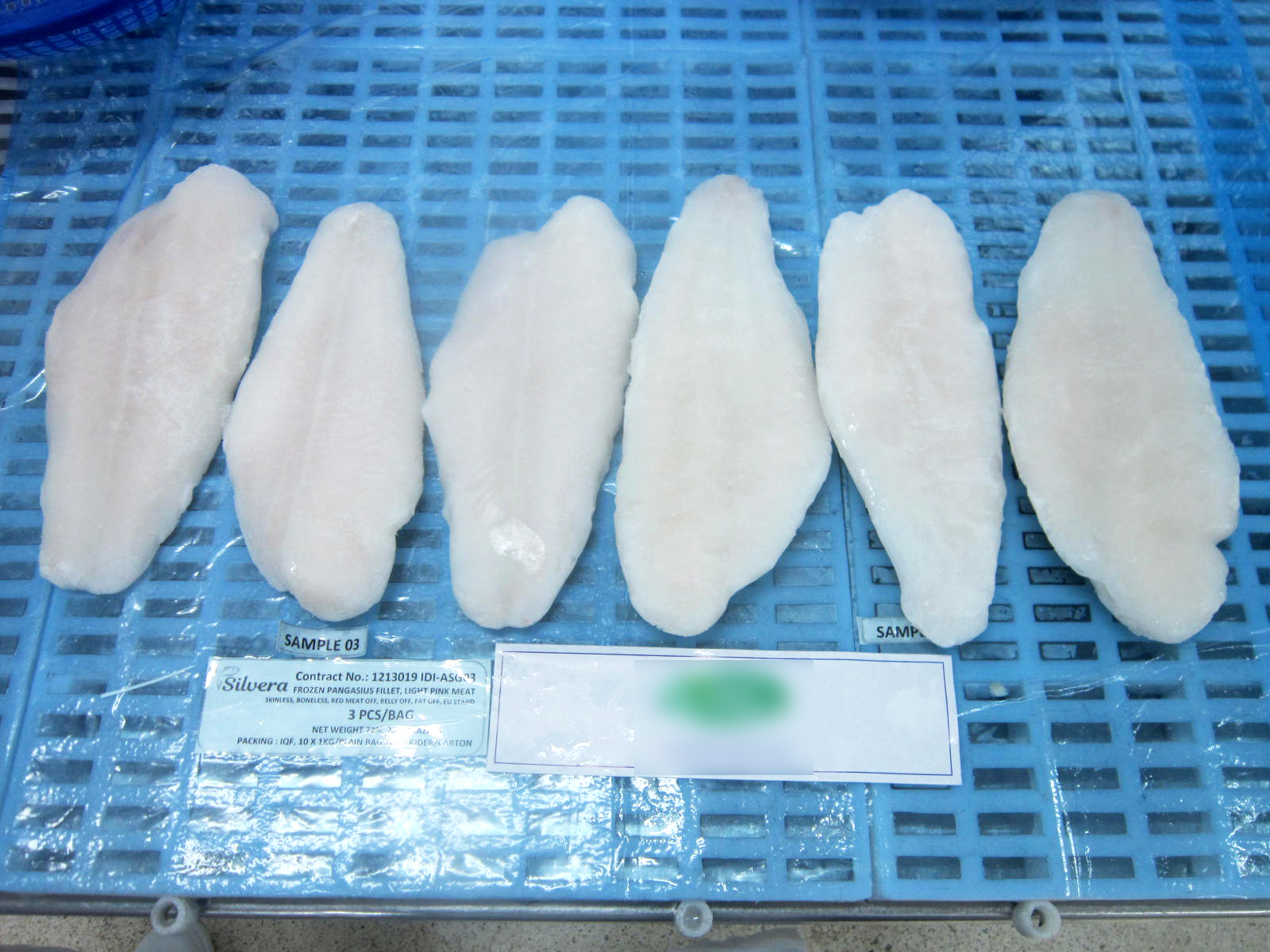 Frozen Pangasius Fillets Removed From Plastic Bags